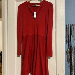 Express red sweater dress